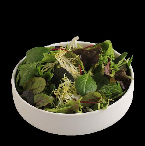 Junge Blattsalate