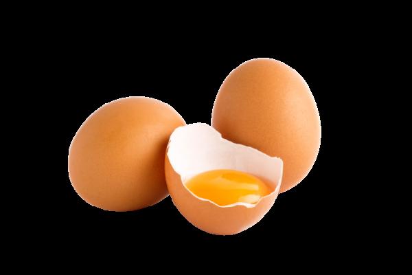 Eier aus Freilandhaltung M/L