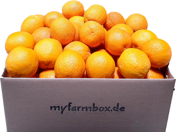myOrangebox